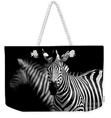 Weekender Tote Bag featuring the photograph Zebra by Charuhas Images