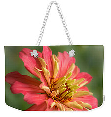 Weekender Tote Bag featuring the photograph Zinnia by Jim Hughes