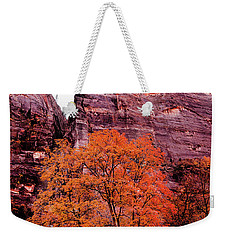 Weekender Tote Bag featuring the photograph Zion National Park by Norman Hall