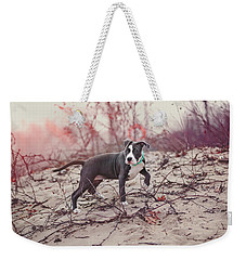 Weekender Tote Bag featuring the photograph American Pitbull  by Peter Lakomy