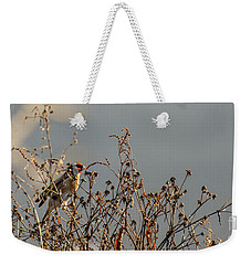 Weekender Tote Bag featuring the photograph One Autumn Day At Ognyanovo Dam by Jivko Nakev