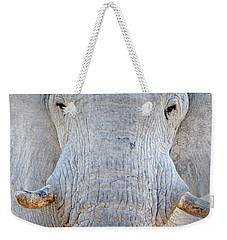 African Elephant Loxodonta Africana Weekender Tote Bag by Panoramic Images