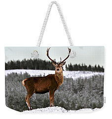 Red Deer Stag Weekender Tote Bag