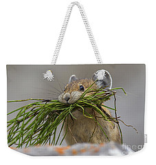 Pika With A Mouthful  Weekender Tote Bag