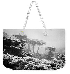 Weekender Tote Bag featuring the photograph 17 Mile Drive Cyprus Tress  by Craig J Satterlee