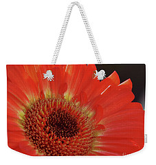 Weekender Tote Bag featuring the photograph Red Gerber by Elvira Ladocki