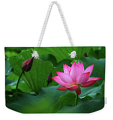 Blossoming Lotus Flower Closeup Weekender Tote Bag