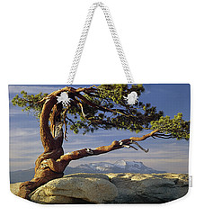 1m6701 Historic Jeffrey Pine Sentinel Dome Yosemite Weekender Tote Bag
