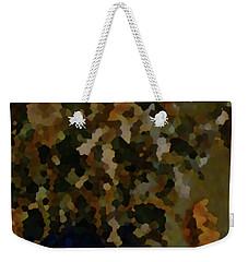 2-13-2057d Weekender Tote Bag