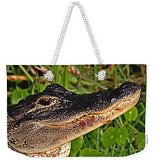American Alligator Weekender Tote Bag