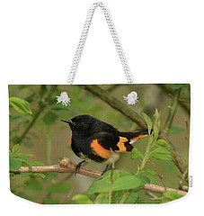 American Redstart Weekender Tote Bag by Alan Lenk