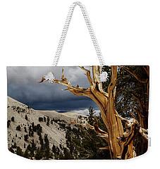 Bristlecone Pine 4 Weekender Tote Bag