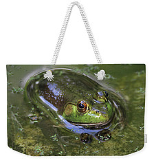 Bullfrog Stony Brook New York Weekender Tote Bag by Bob Savage