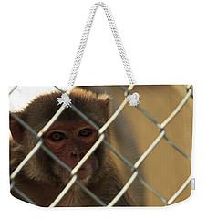 Caged Monkey Weekender Tote Bag