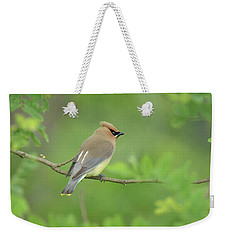 Cedar Waxwing Weekender Tote Bag by Alan Lenk