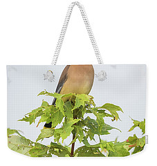 Cedar Waxwing Weekender Tote Bag by Ricky L Jones
