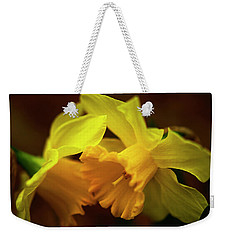 Weekender Tote Bag featuring the photograph 2 Daffodils by John Harding