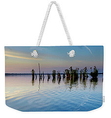 Weekender Tote Bag featuring the photograph Dismal Swamp 2016 by Kevin Blackburn