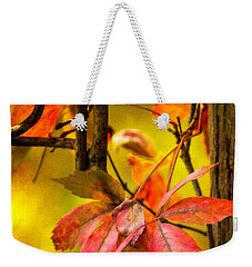 Fall Colors Weekender Tote Bag by Eduard Moldoveanu