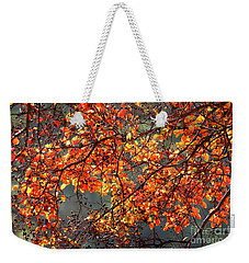 Weekender Tote Bag featuring the photograph Fall Leaves by Nicholas Burningham