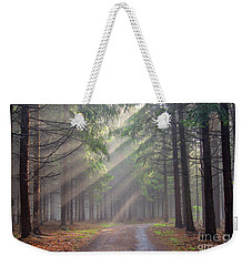 God Beams - Coniferous Forest In Fog Weekender Tote Bag