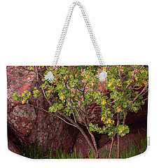 Weekender Tote Bag featuring the photograph Hidden by Iris Greenwell