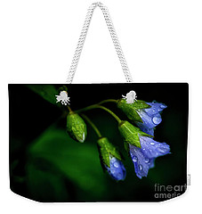 Weekender Tote Bag featuring the photograph Jacobs Ladder by Thomas R Fletcher