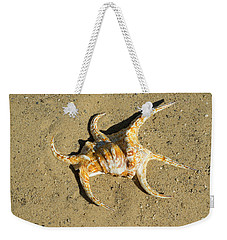 Weekender Tote Bag featuring the photograph Lambis Arthritica Spider Conch by Frank Wilson