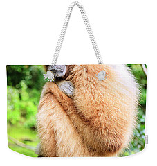Weekender Tote Bag featuring the photograph Lar Gibbon by Alexey Stiop