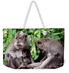 Long Tailed Macaques  Weekender Tote Bag