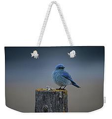 Mountain Bluebird 2 Weekender Tote Bag