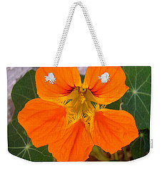 Weekender Tote Bag featuring the photograph Nasturtium by Stephanie Moore