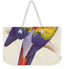 Red And Yellow Macaw Weekender Tote Bag by Edward Lear