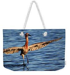 Weekender Tote Bag featuring the photograph Reddish Egret Ocean by John F Tsumas