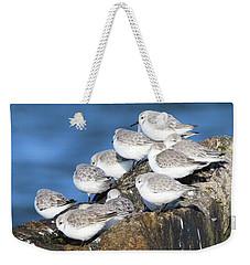 Sanderling Westhampton New York Weekender Tote Bag
