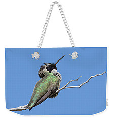 Weekender Tote Bag featuring the photograph Sleeping Beauty by Fraida Gutovich