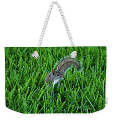 Weekender Tote Bag featuring the photograph 2- Squirrel by Joseph Keane
