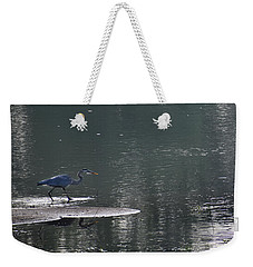 Weekender Tote Bag featuring the photograph Stalker  by Skip Willits