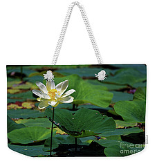 The Lotus Pond Weekender Tote Bag
