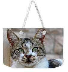 Weekender Tote Bag featuring the photograph The Wait by Munir Alawi