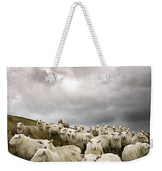 Welsh Lamb Weekender Tote Bag