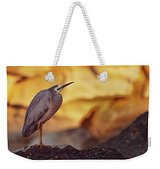 White-faced Heron At The Beach Weekender Tote Bag