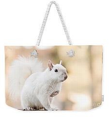 White Squirrel Weekender Tote Bag by Vizual Studio