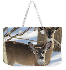 White Tailed Deer Smithtown New York Weekender Tote Bag by Bob Savage
