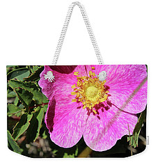 Weekender Tote Bag featuring the photograph Wild Rose by Ann E Robson