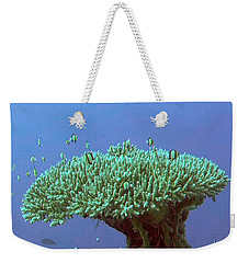 Zanzibar Island Sea  Coral Reef Vegitation Bio Diversity Of Exotic Fish Plants And  Organisims Zanzi Weekender Tote Bag