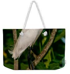 Weekender Tote Bag featuring the photograph White Egret by Christopher Holmes