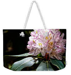 Weekender Tote Bag featuring the photograph 20120621-dsc05834 by Christopher Holmes