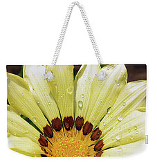 Weekender Tote Bag featuring the photograph Nice Gazania by Elvira Ladocki