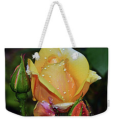Weekender Tote Bag featuring the photograph Nice Rose by Elvira Ladocki